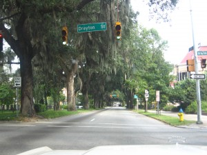The dangerous streets of Savannah, where the trees have eyes.